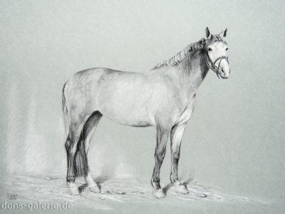 Kohle & weiße Kreide
